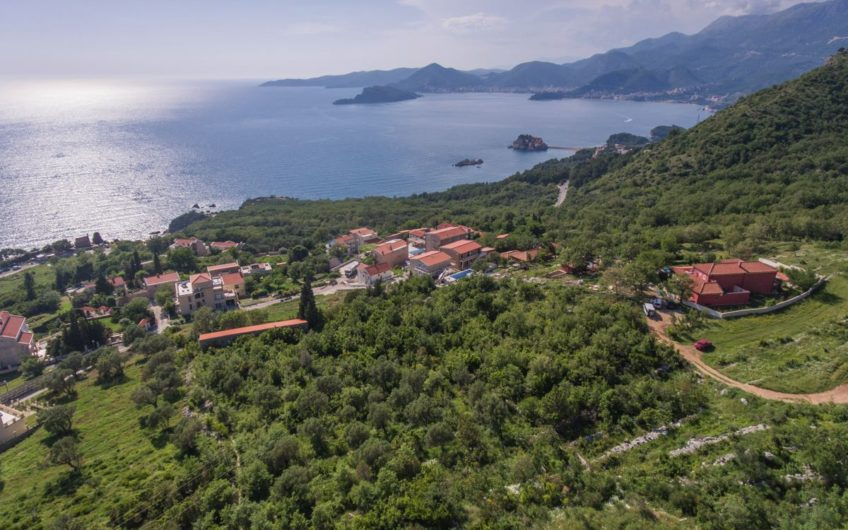 Species plot for construction of 5 villas on the Budva Riviera