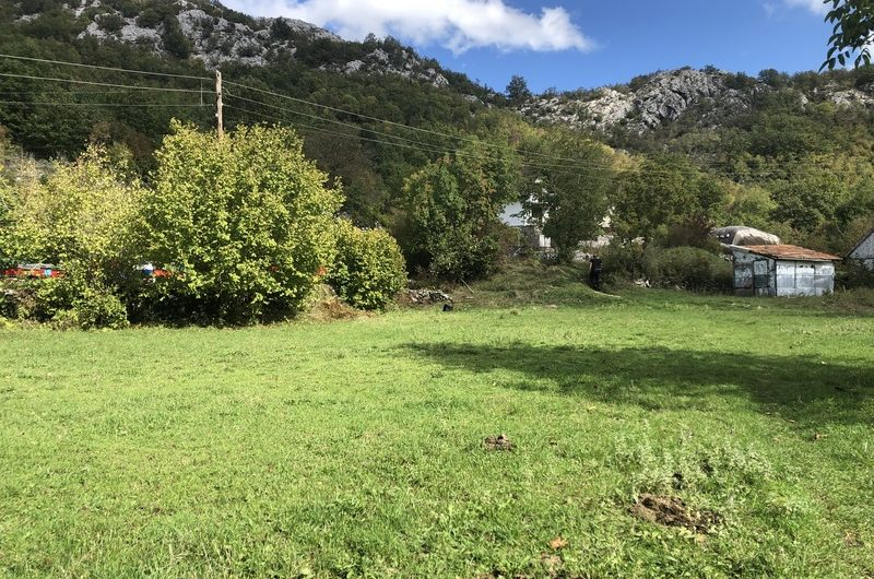 2 houses on a large plot. Cetinje. Budgetary
