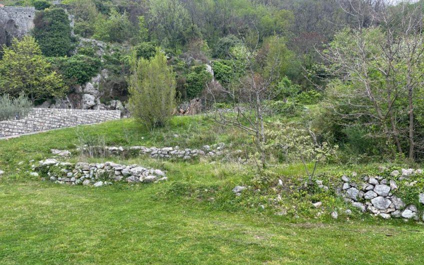 Species plot in Blizikuce. Urbanized. 65,000 euros. Bargain
